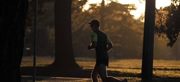 Running – Jogging – Walking in Vienna