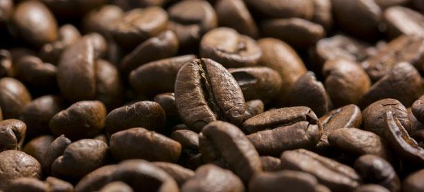 hip cafés in vienna